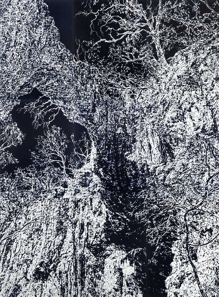 Chasm 3, 2017, monotype on paper, 228cm x 168cm