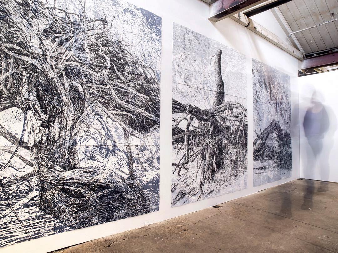 Verge series install, 2018, George Farmer Building, Biennale of Australian Art, Ballarat.