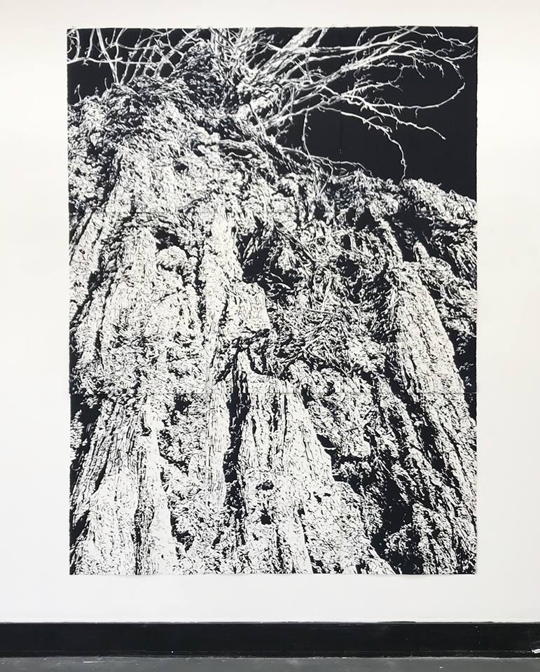 Annika Romeyn, Chasm 4, 2017, monotype on paper, 228cm x 168cm