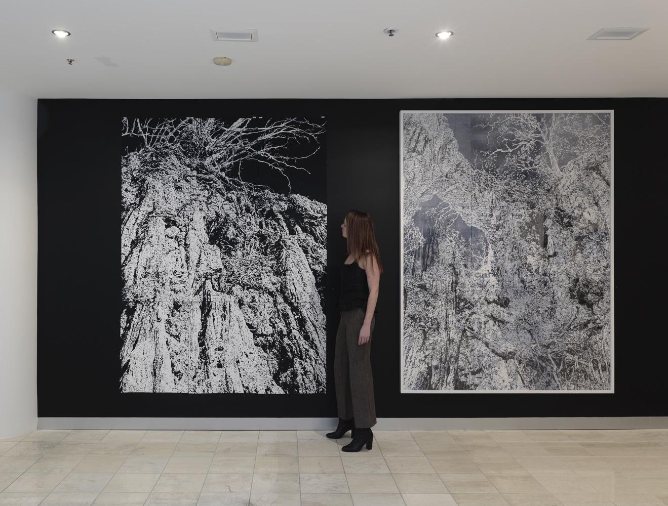 'Subterrain' install, 2018, Collins Place Gallery, photo by Tim Gresham