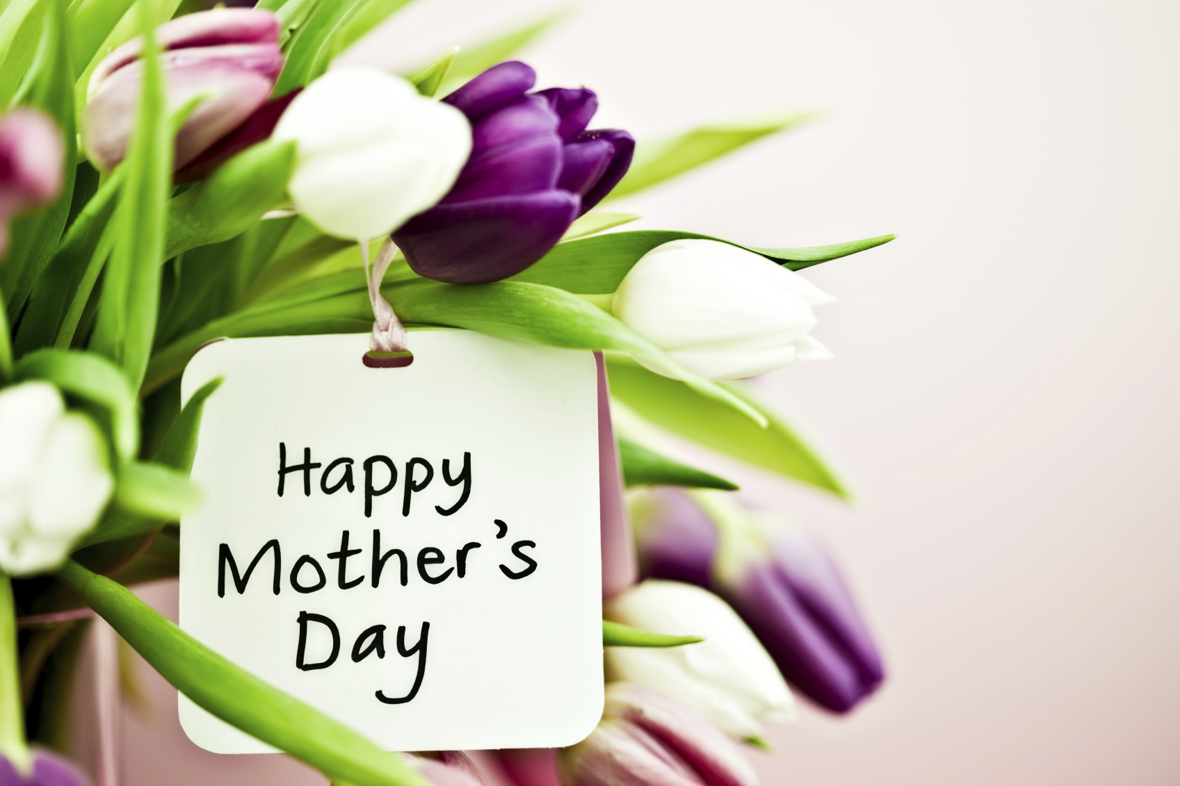 We now have Mother's Day Cards in stock if you'd like to come down to the CRC and have a look.. We can even make personal ones for you! :)