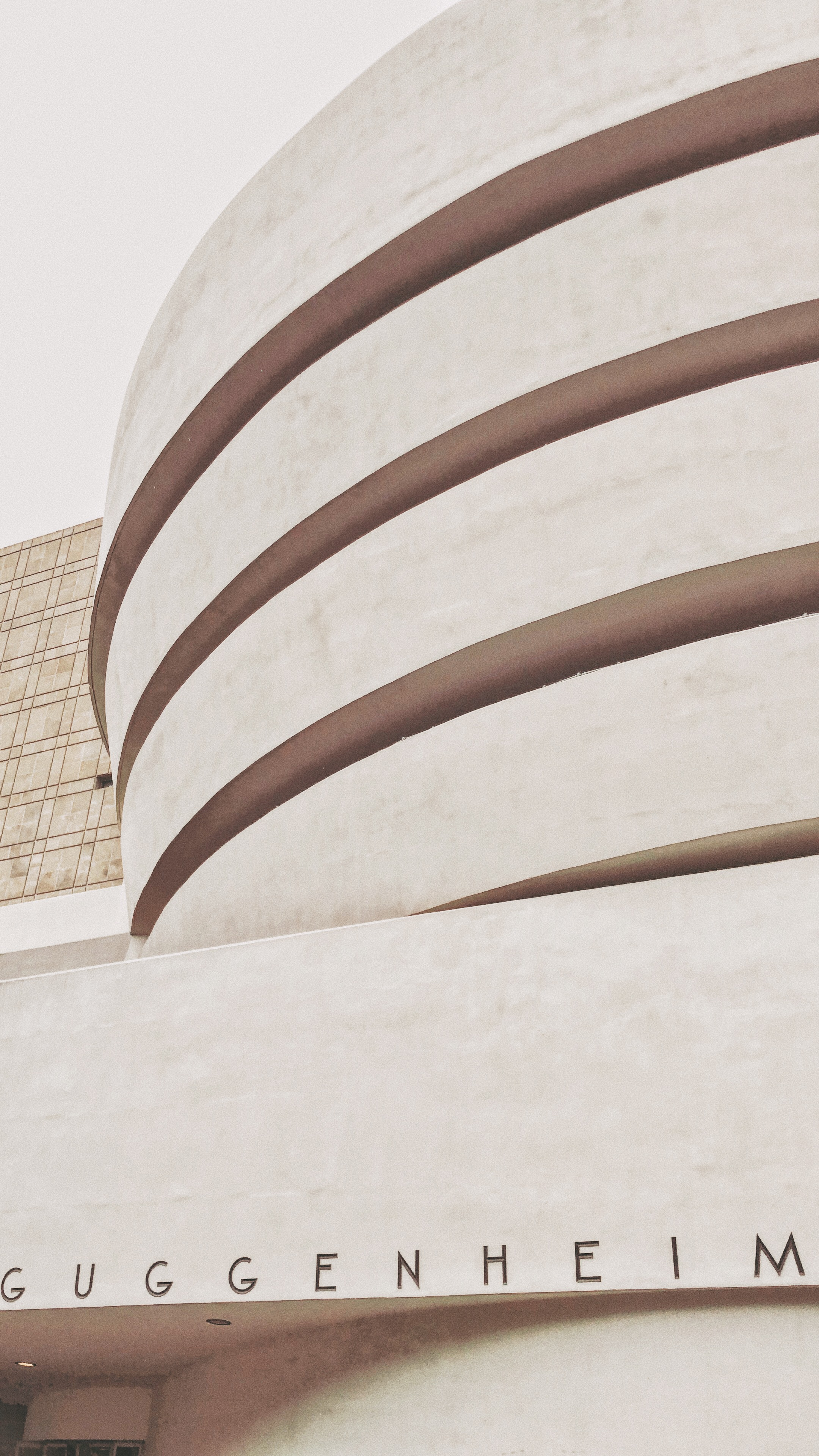 The Guggenheim  - Art and Culture