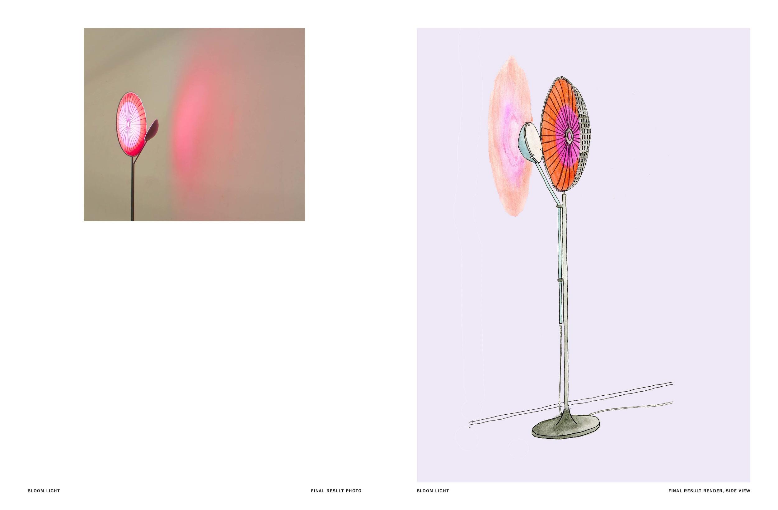 Bloom, light