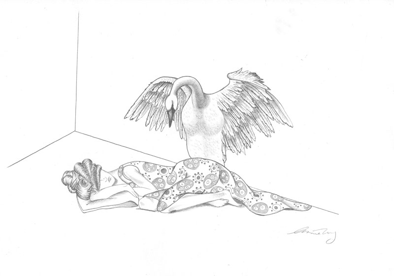 Feathered Glory