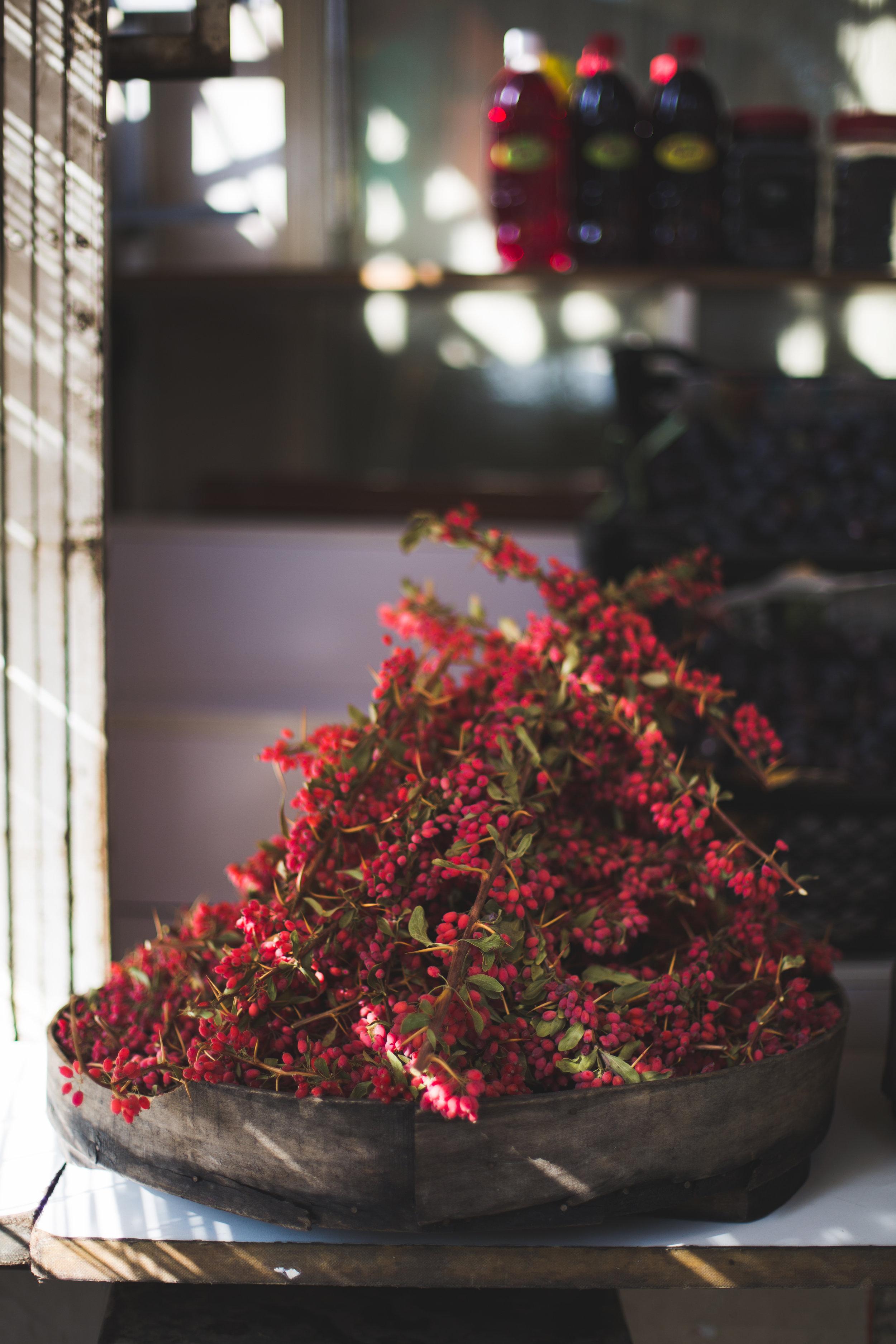 Black Chickpea barberry saffron Hummus noghlemey