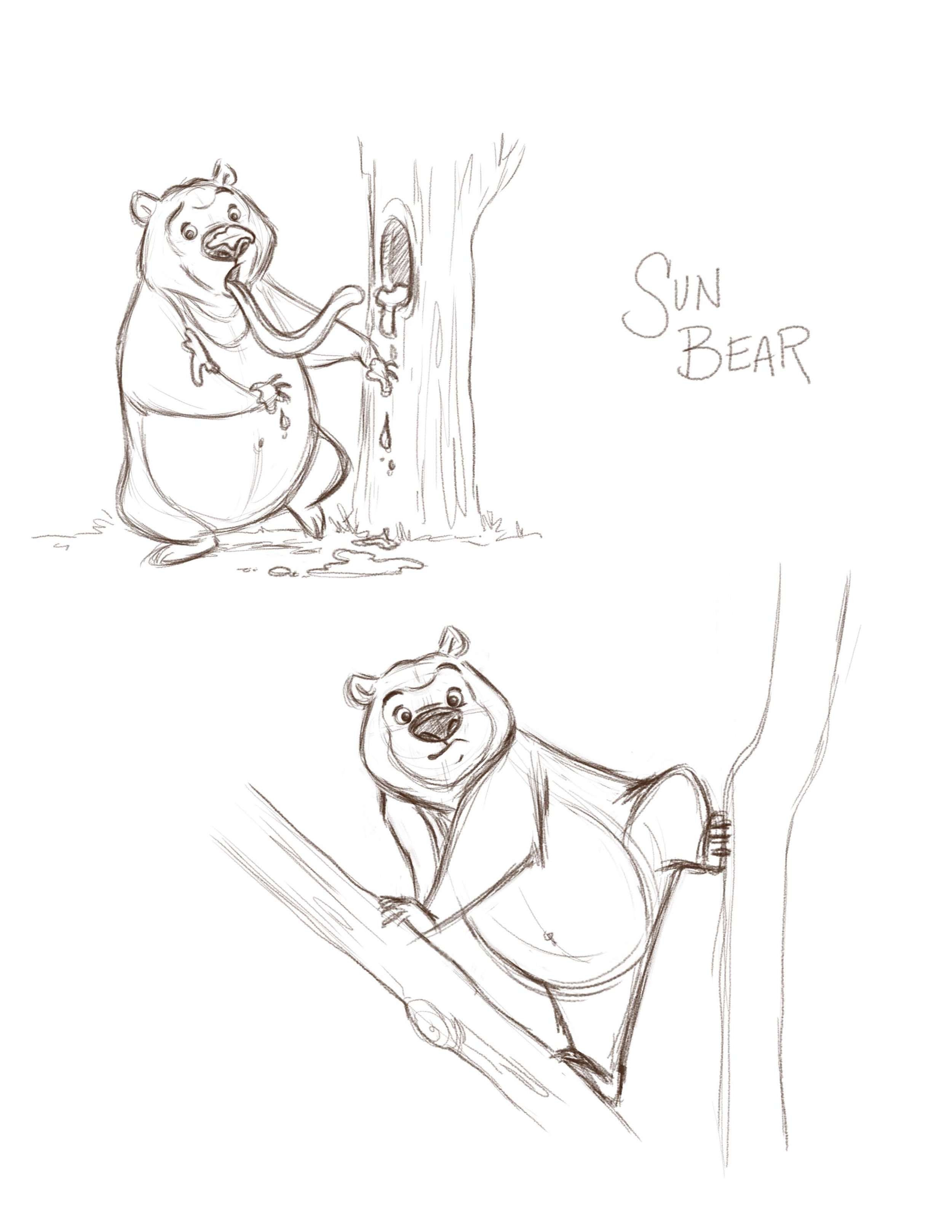 Sun Bear Skeches.jpg