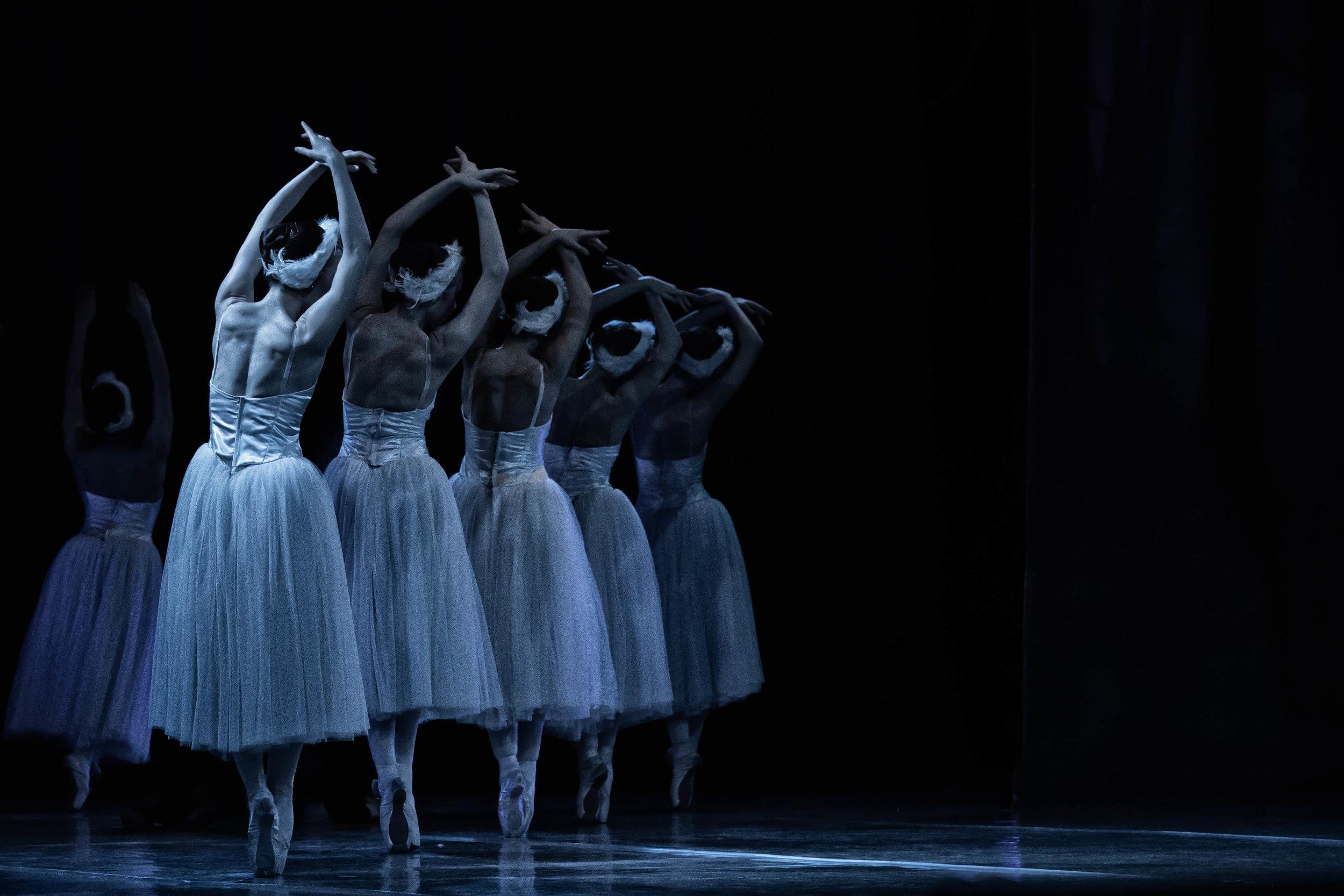 Vienna Festival Ballet--18.jpg