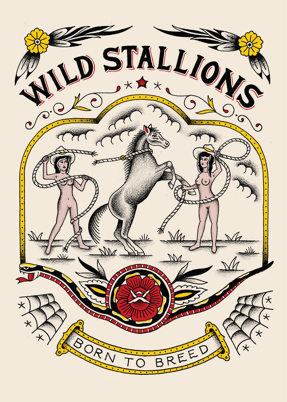 wild_stallions.jpg