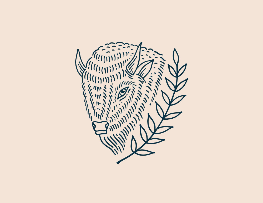 buffalo_loose.jpg