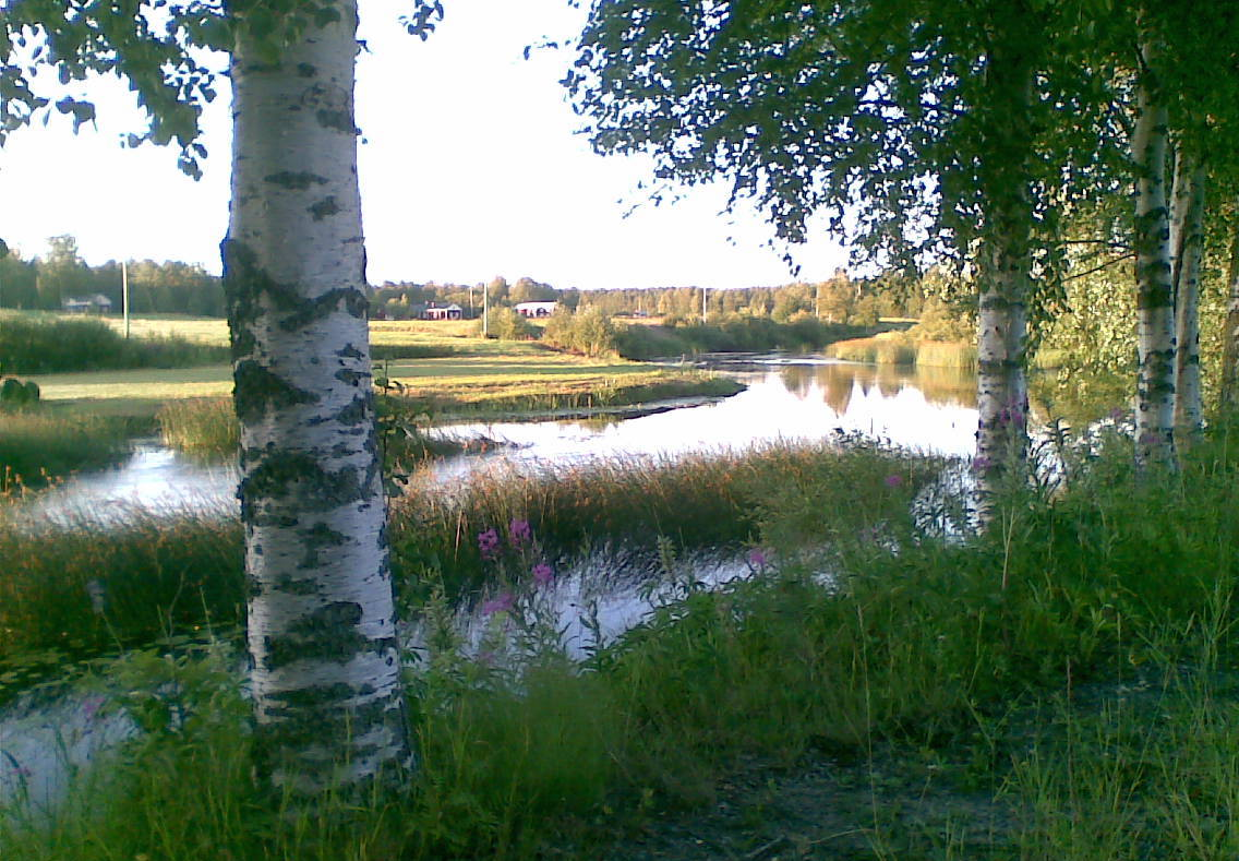 18072010_esseå-3.jpg