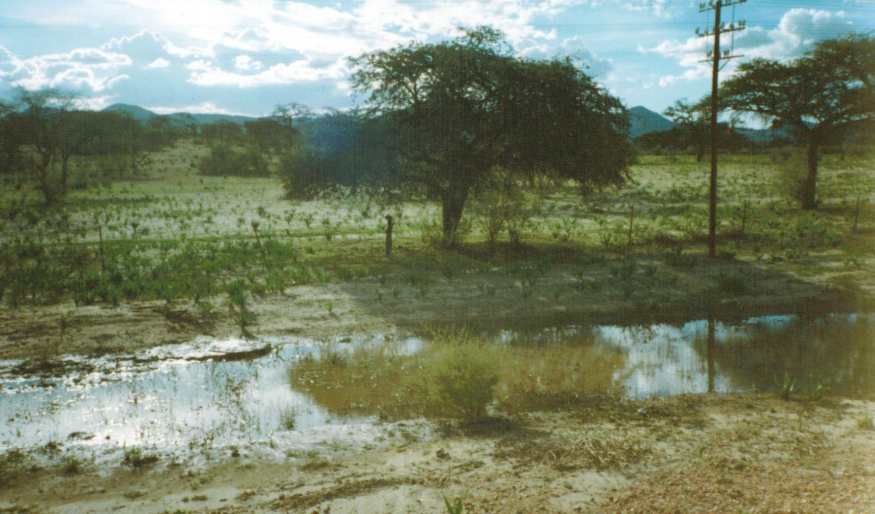 Namibia_w_maatalousalue.jpeg
