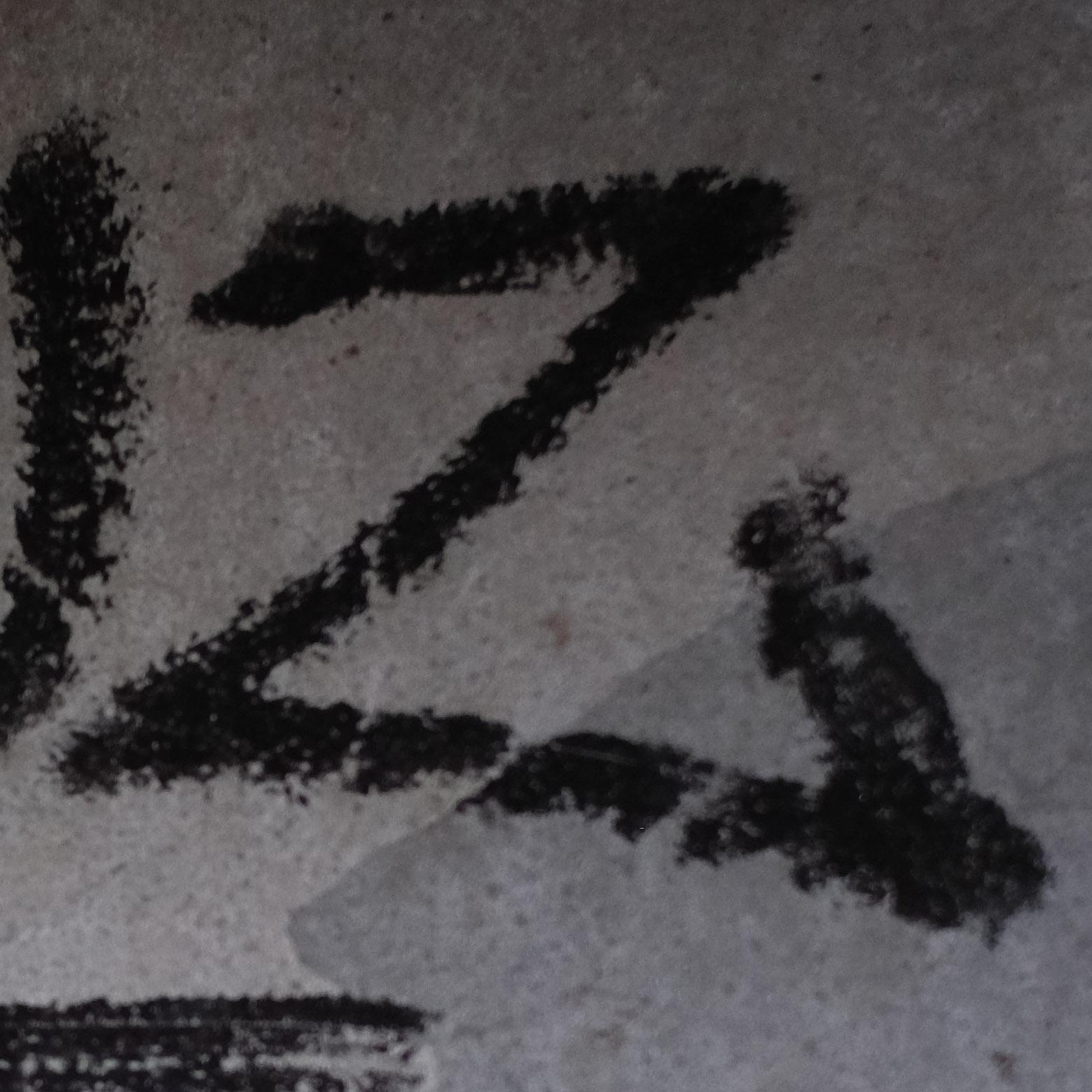 -Z2-crop copy.jpg