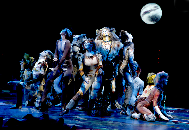 NSMT-CATS-Ensemble-5-thumb.jpg