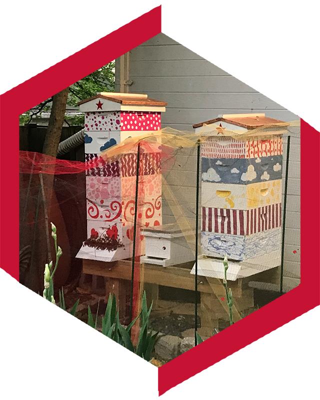 Hives_Hexagon.jpg