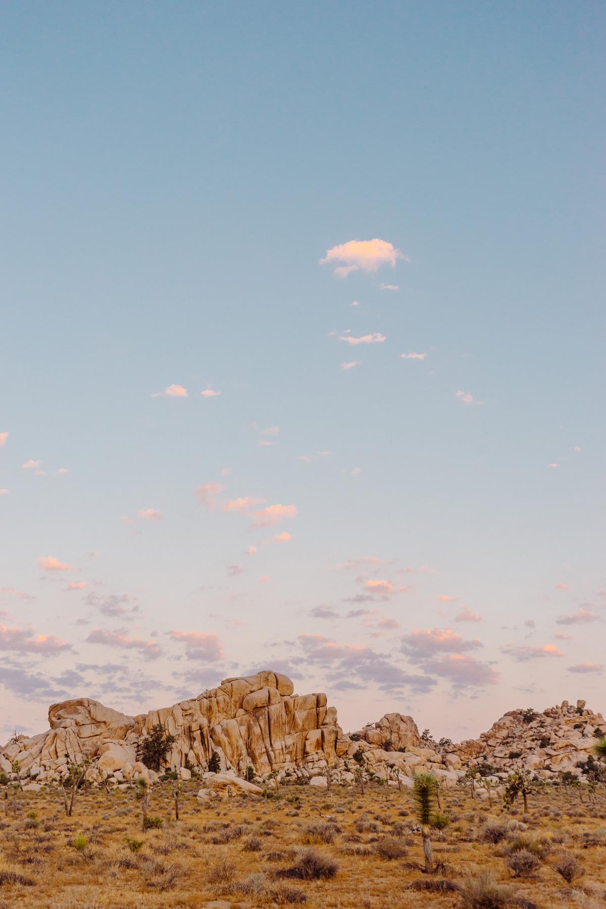 scott-snyder-photo-joshua-tree-09.jpg
