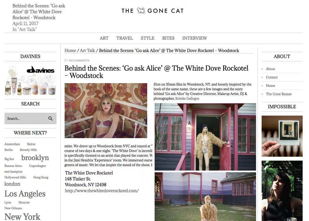 The Gone Cat April 17