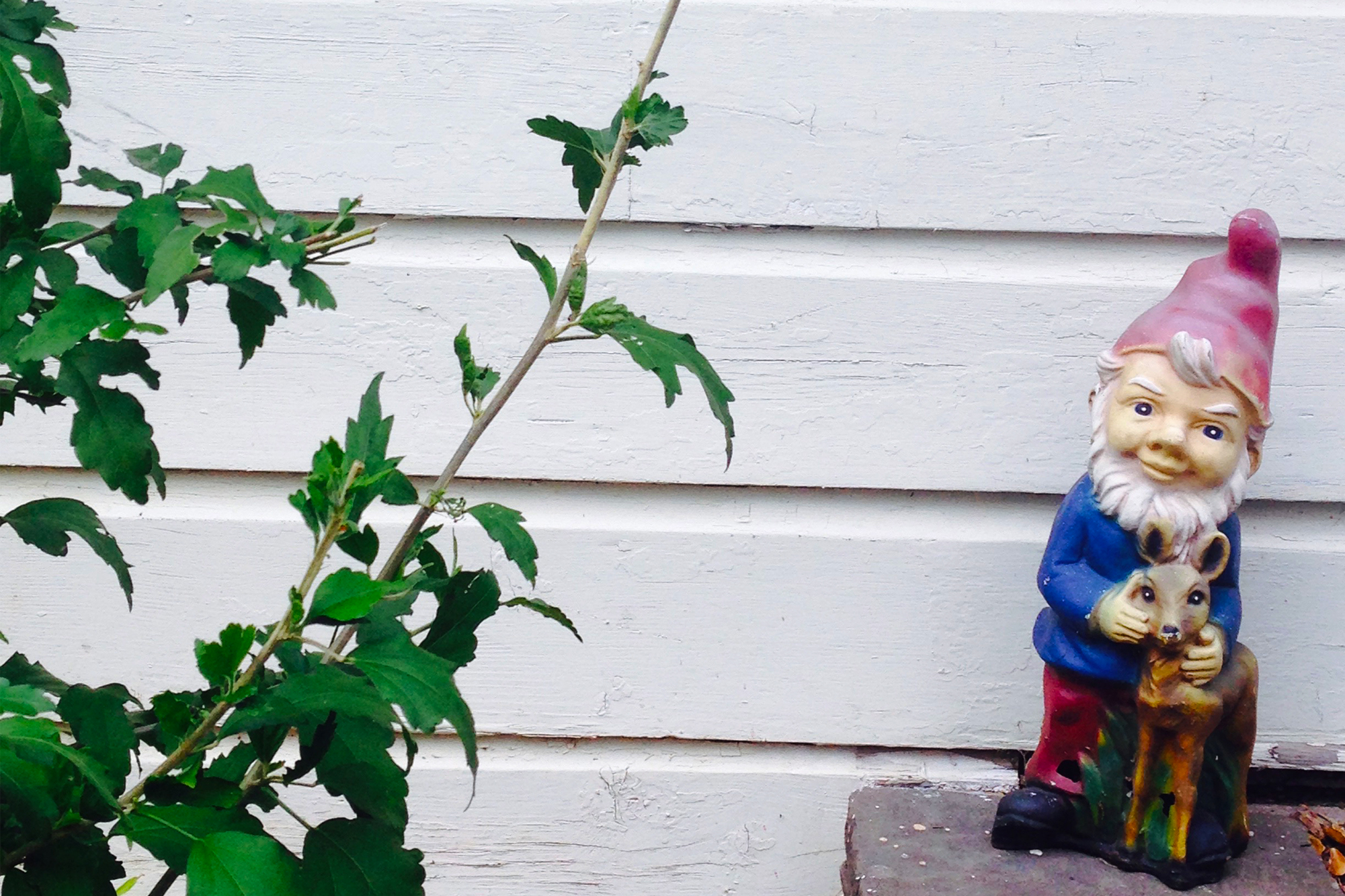 rocket_gnome.jpg