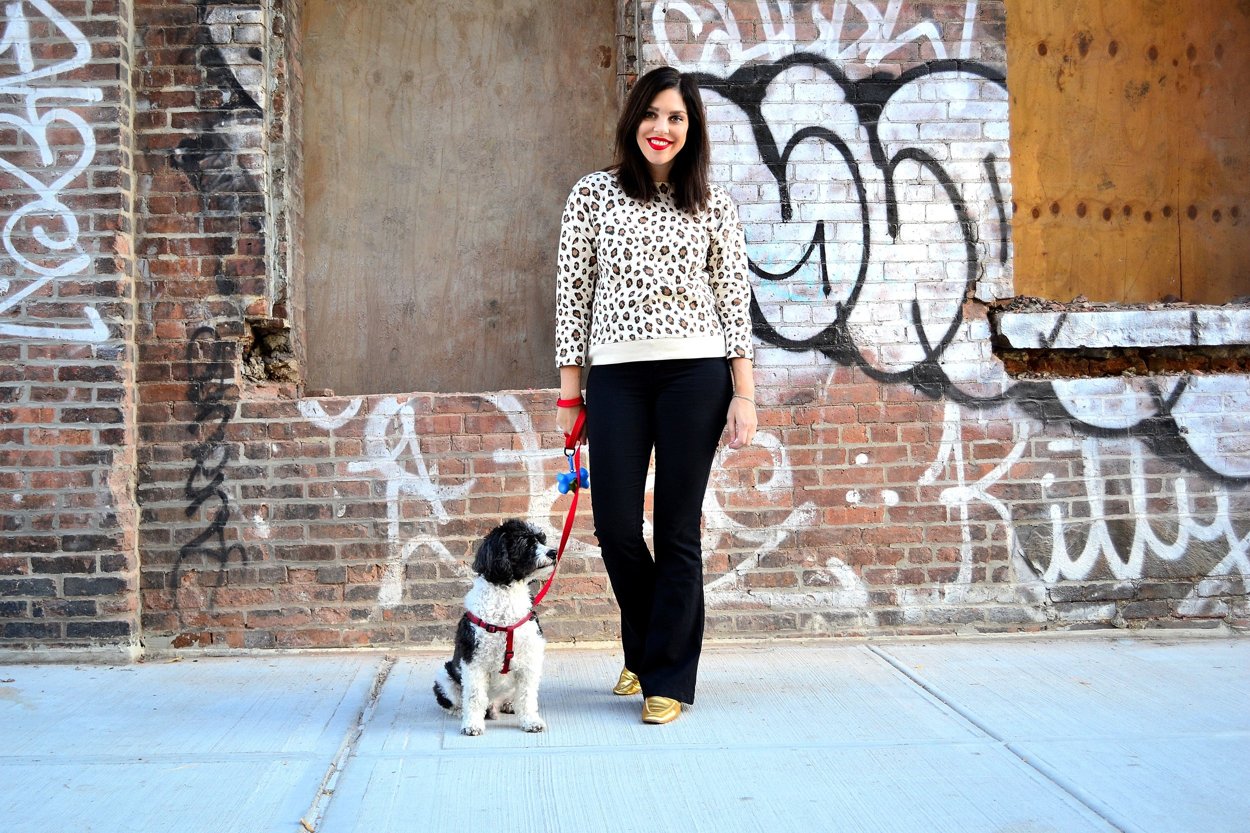 leopard sweatshirt- J.Crew ,  high waisted jeans- Express ,  gold loafers- LF/LIFE