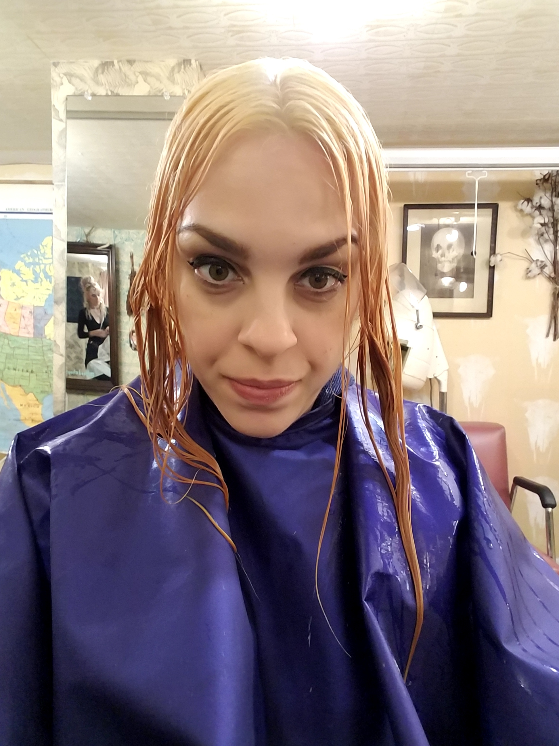 step 3 to blonde- 1.jpg