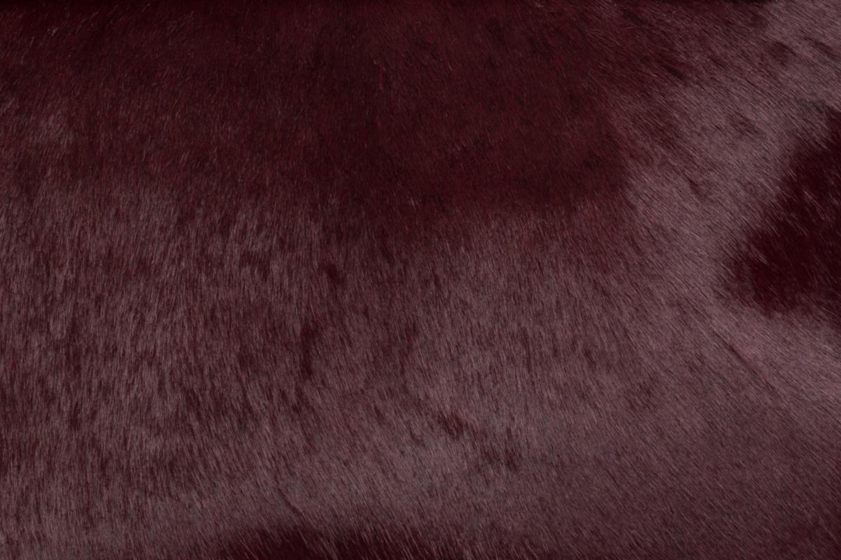 Burgundy Pony