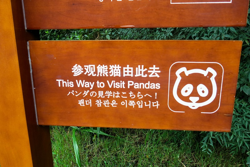 all you need is to see pandas...