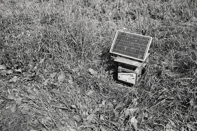 jarren vink glynwood organic farm farmer farming solar