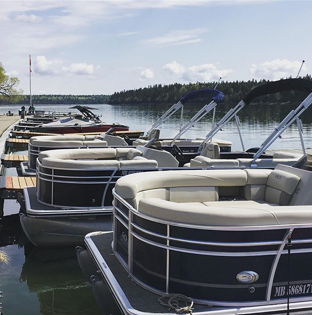 The Clear Lake Marina is open for Summer 2019! Come down to the kiosk if you want to get out and explore Clear Lake! Boat rentals, kayaking, peddle-boats and paddle boards are all available for you to enjoy the calm water and sunshine! Come on down or visit our website (link in bio) for more information!