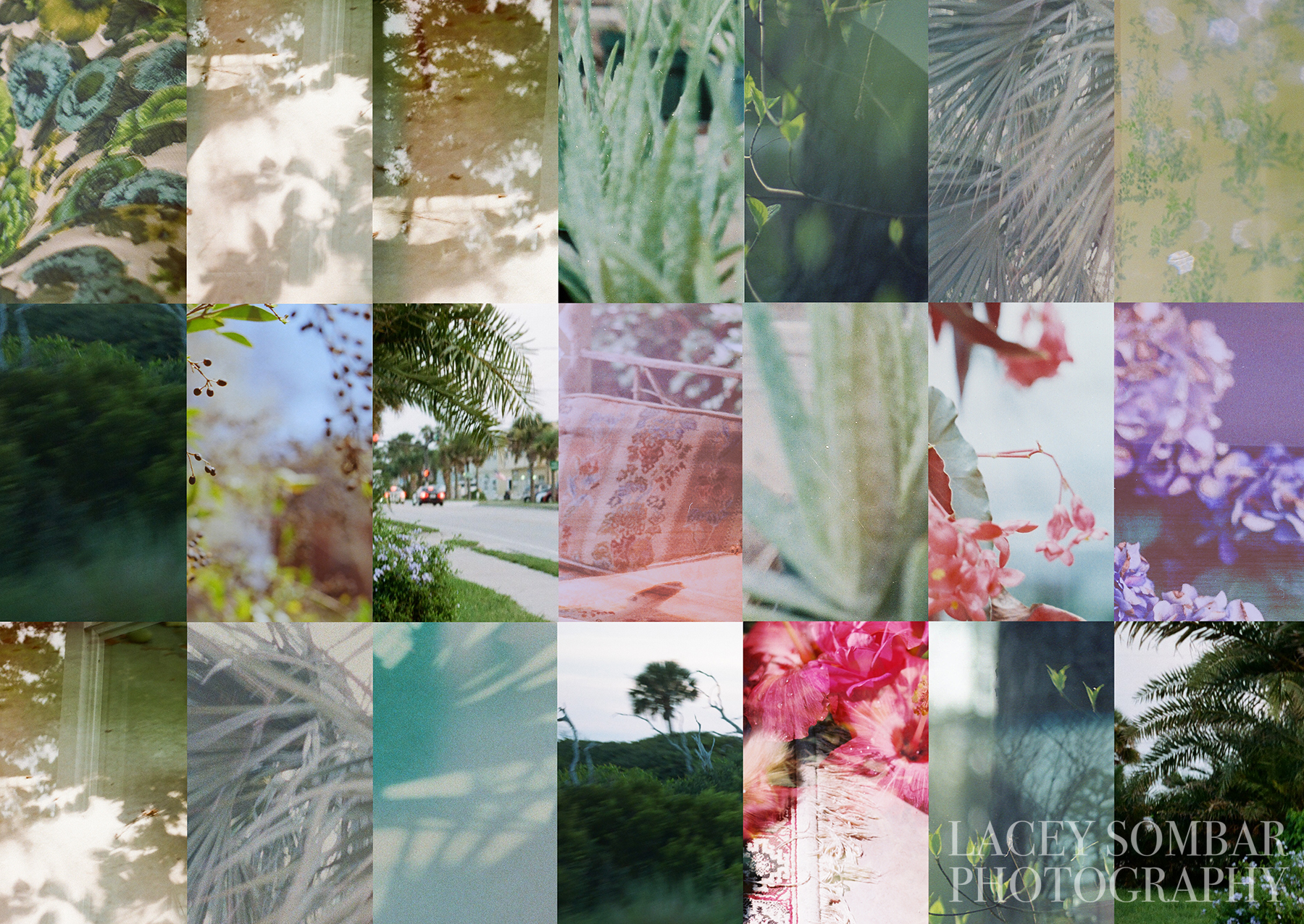 Lacey Sombar Photo Quilt 2