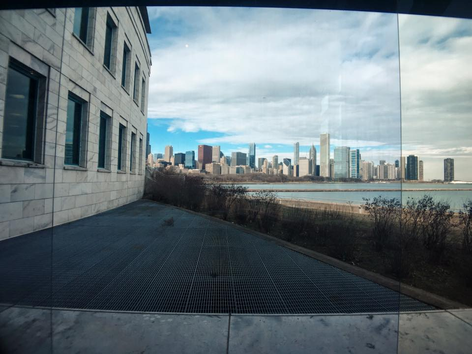 View from Shedd Aquarium