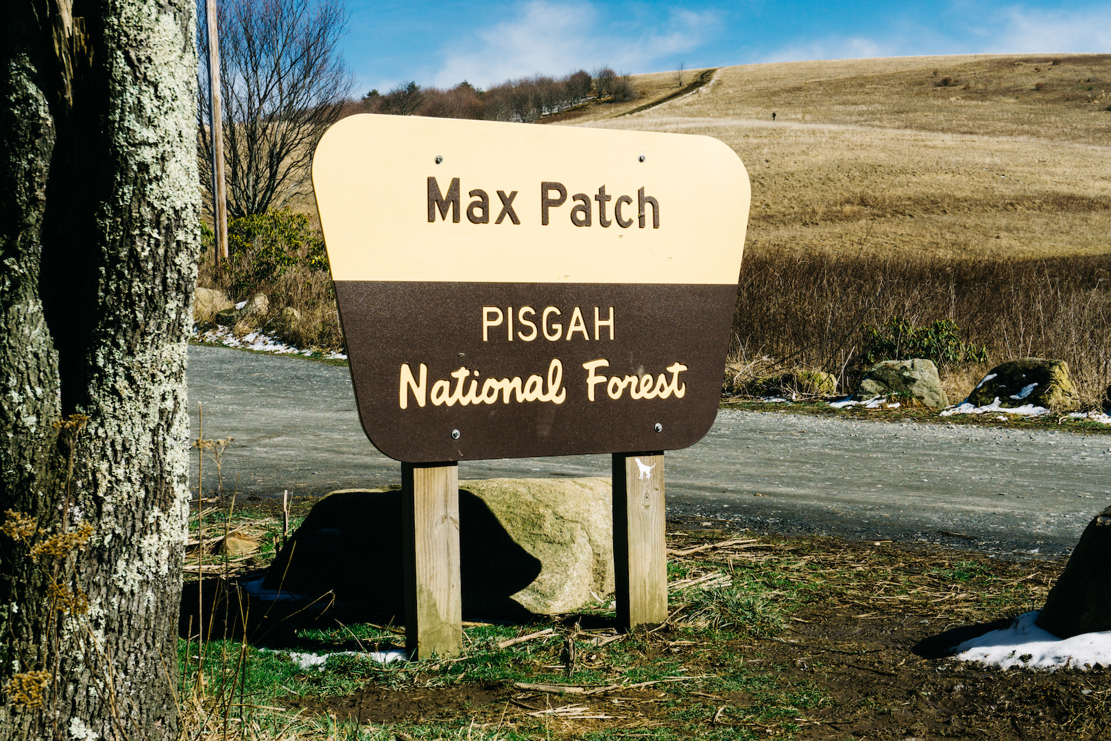 Max Patch Pisgah National Forest