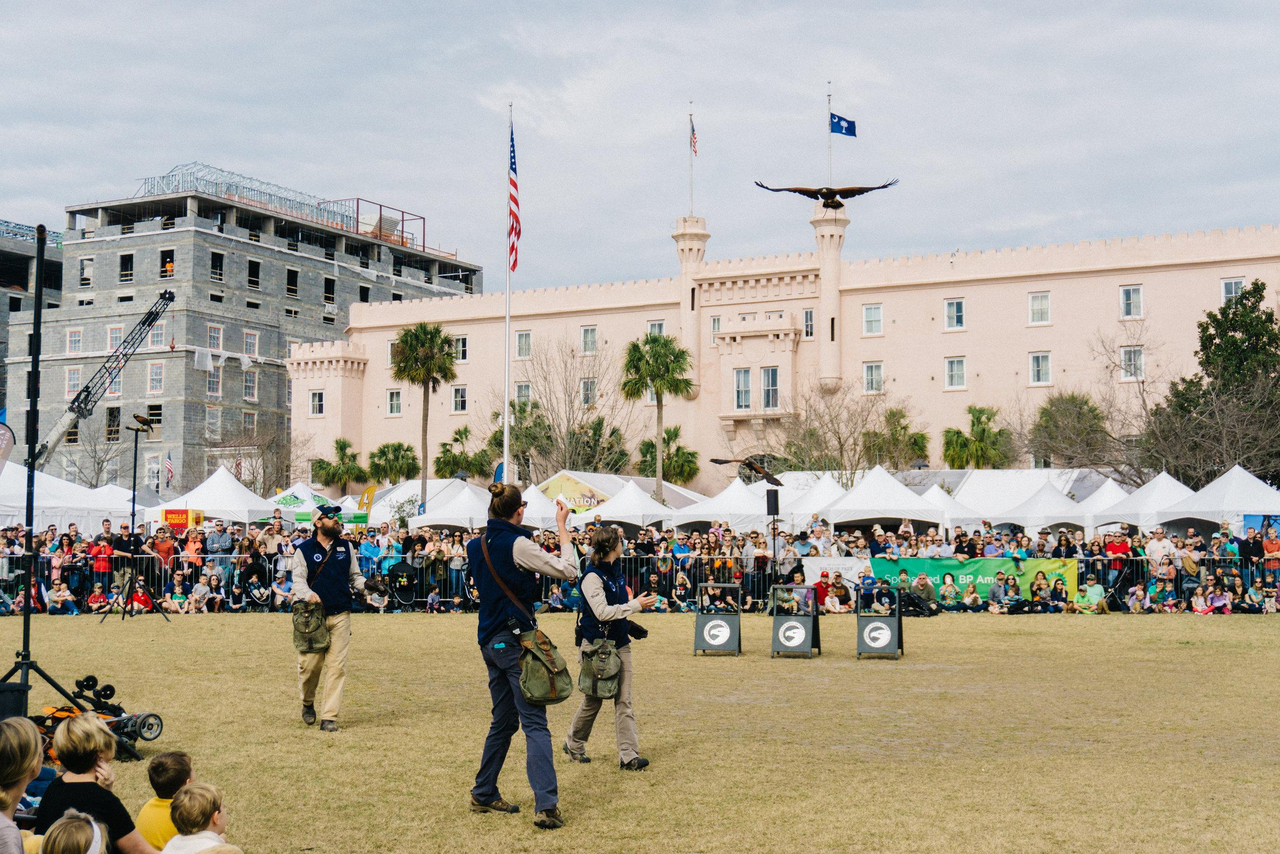 Birds of Prey in flight demonstration