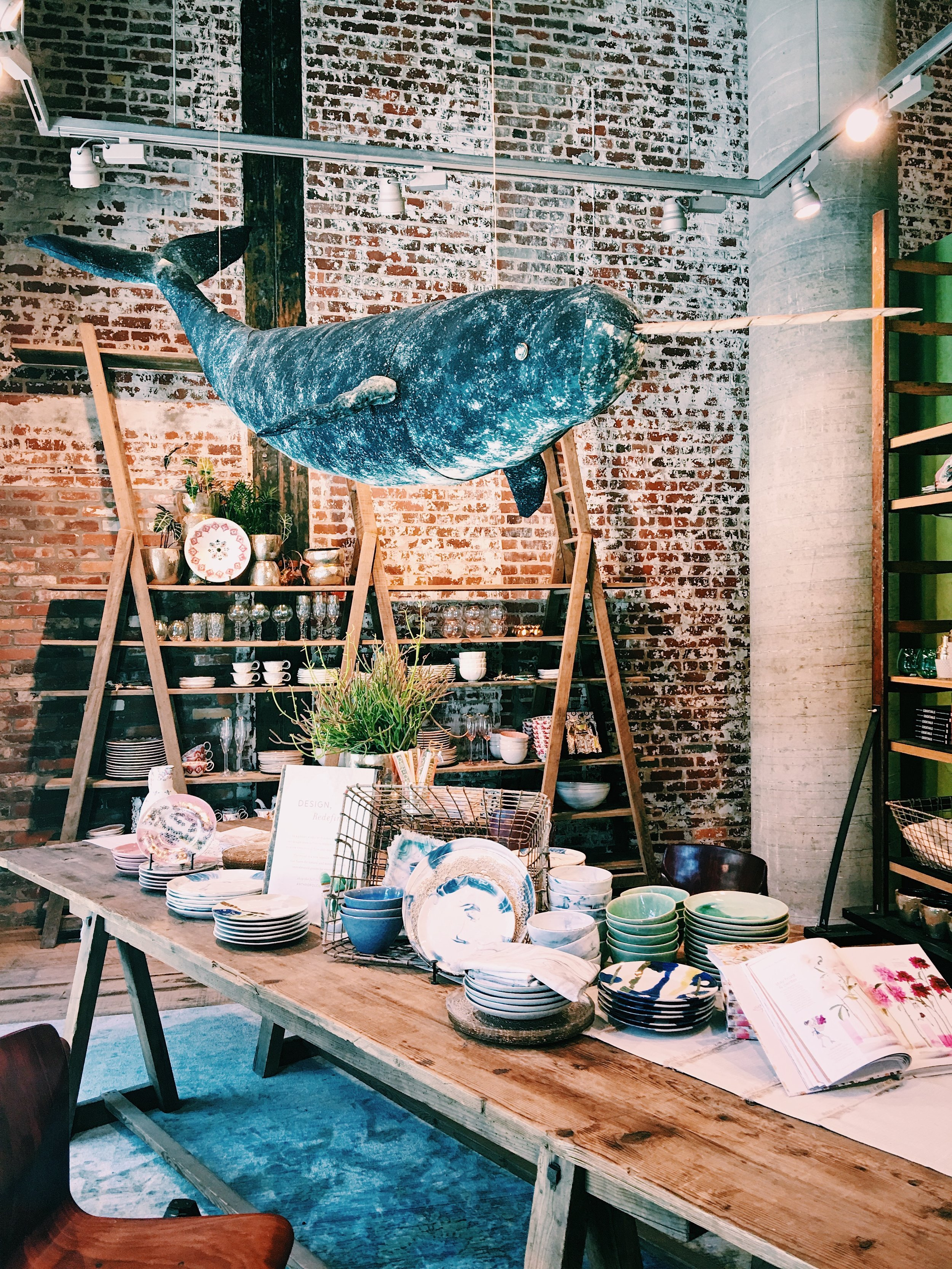 Whale at Anthropologie