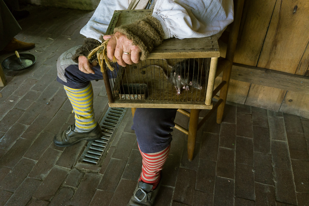 Ratcatcher at the Living History Park