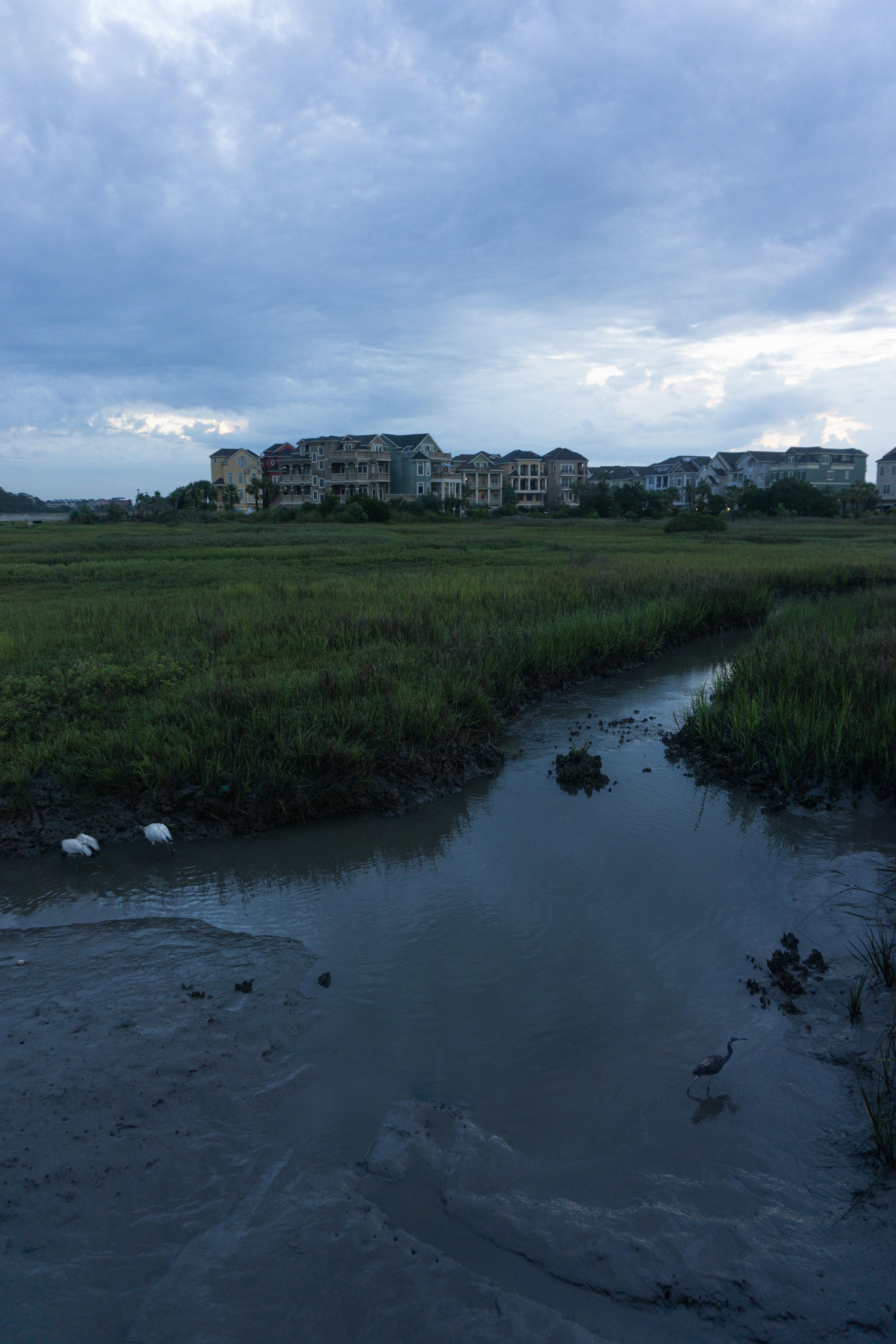 Hilton Head Island marsh