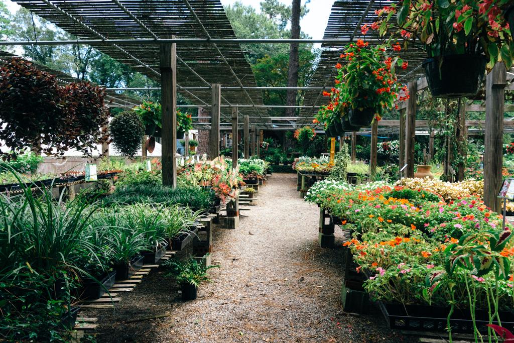 Bedford-Greenhouses-Augusta-Georgia-18.jpg