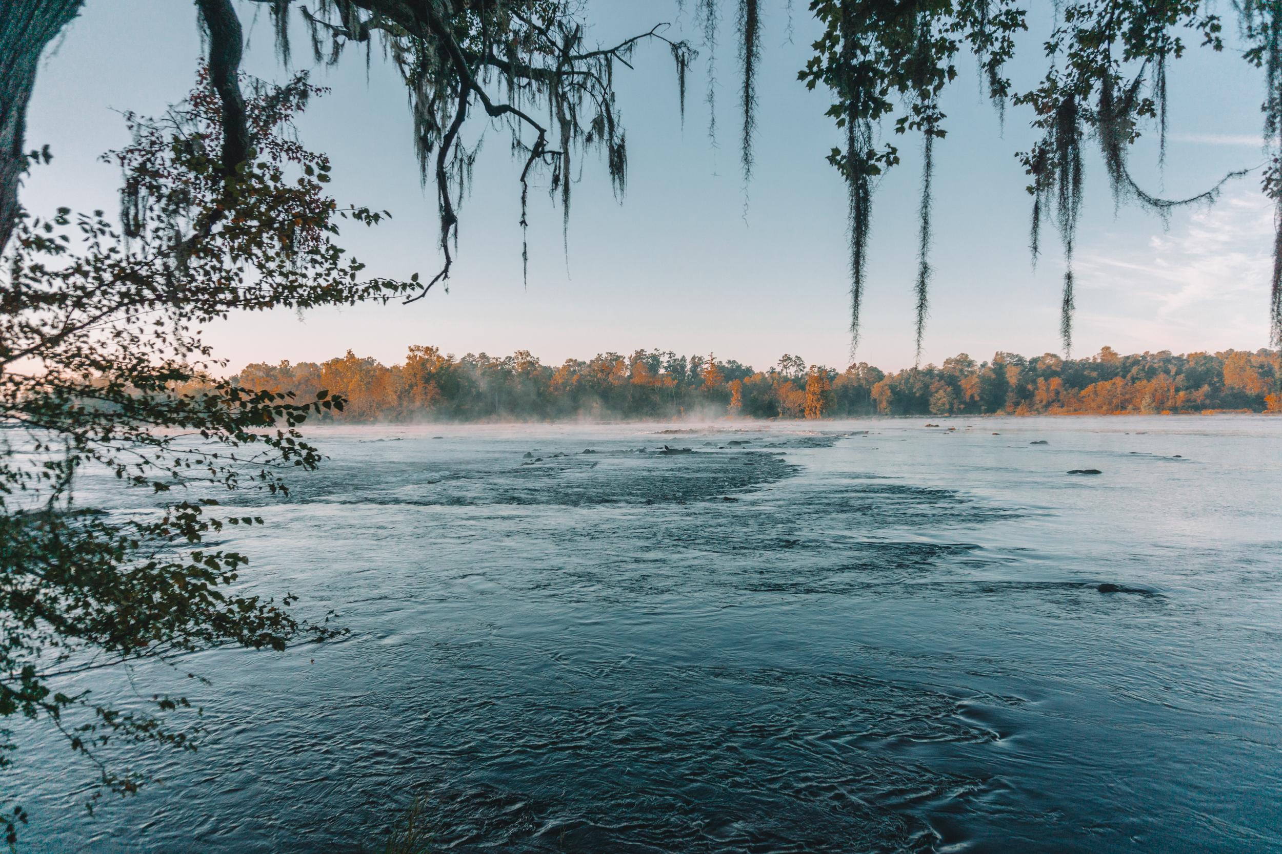 savannah-river-bluffs-fall-76.jpg