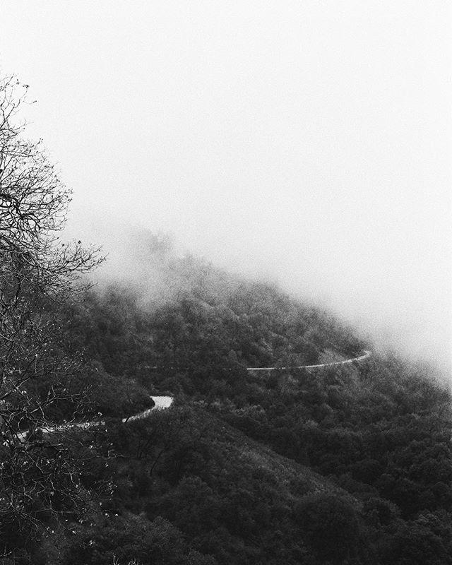 Foggy film