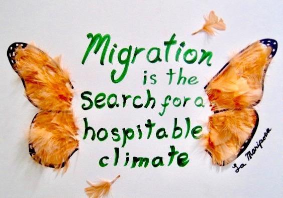 illustration immigration.jpeg