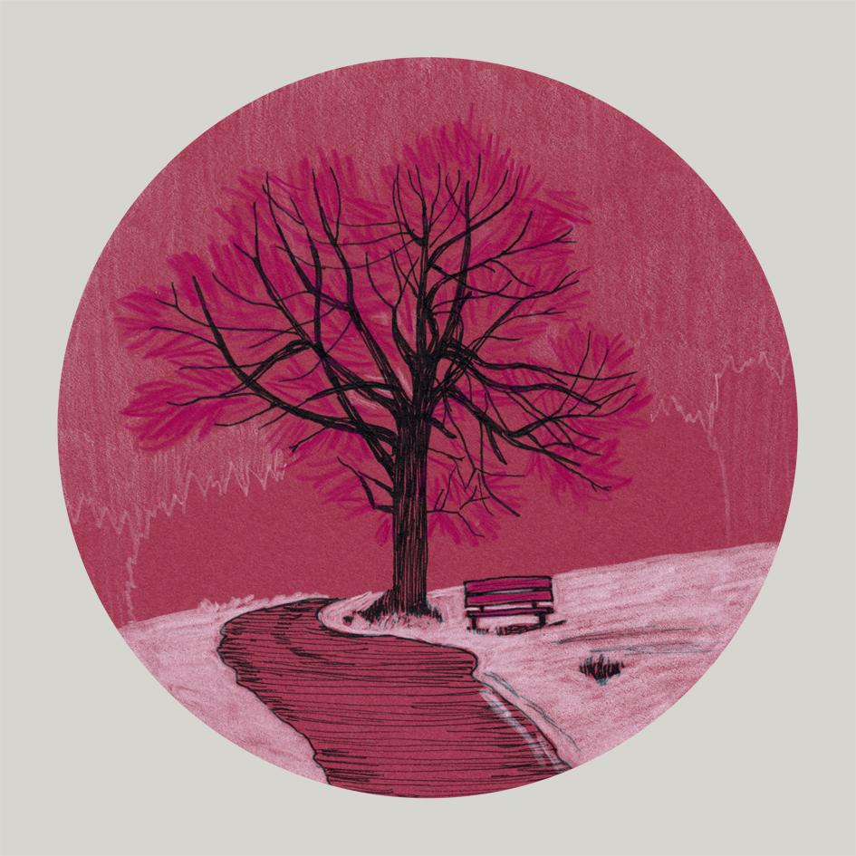 39 Tree and Snow.jpg