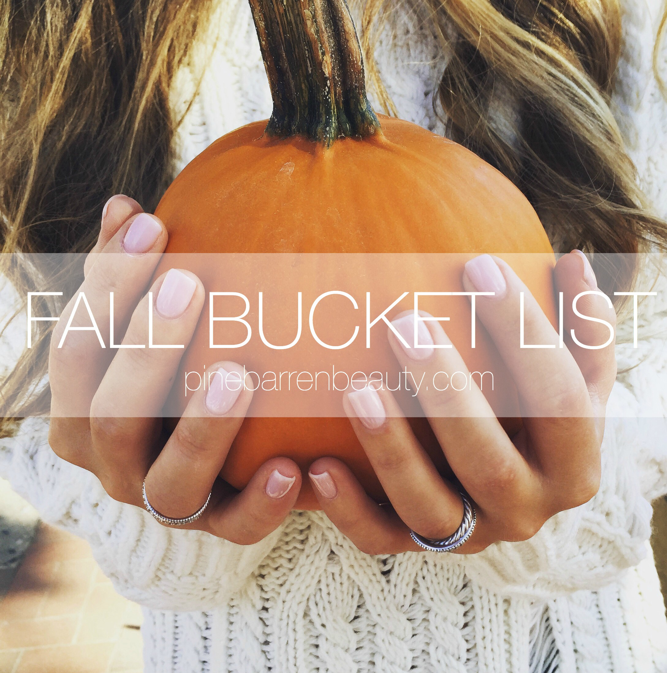 fall bucket list // pinebarrenbeauty.com
