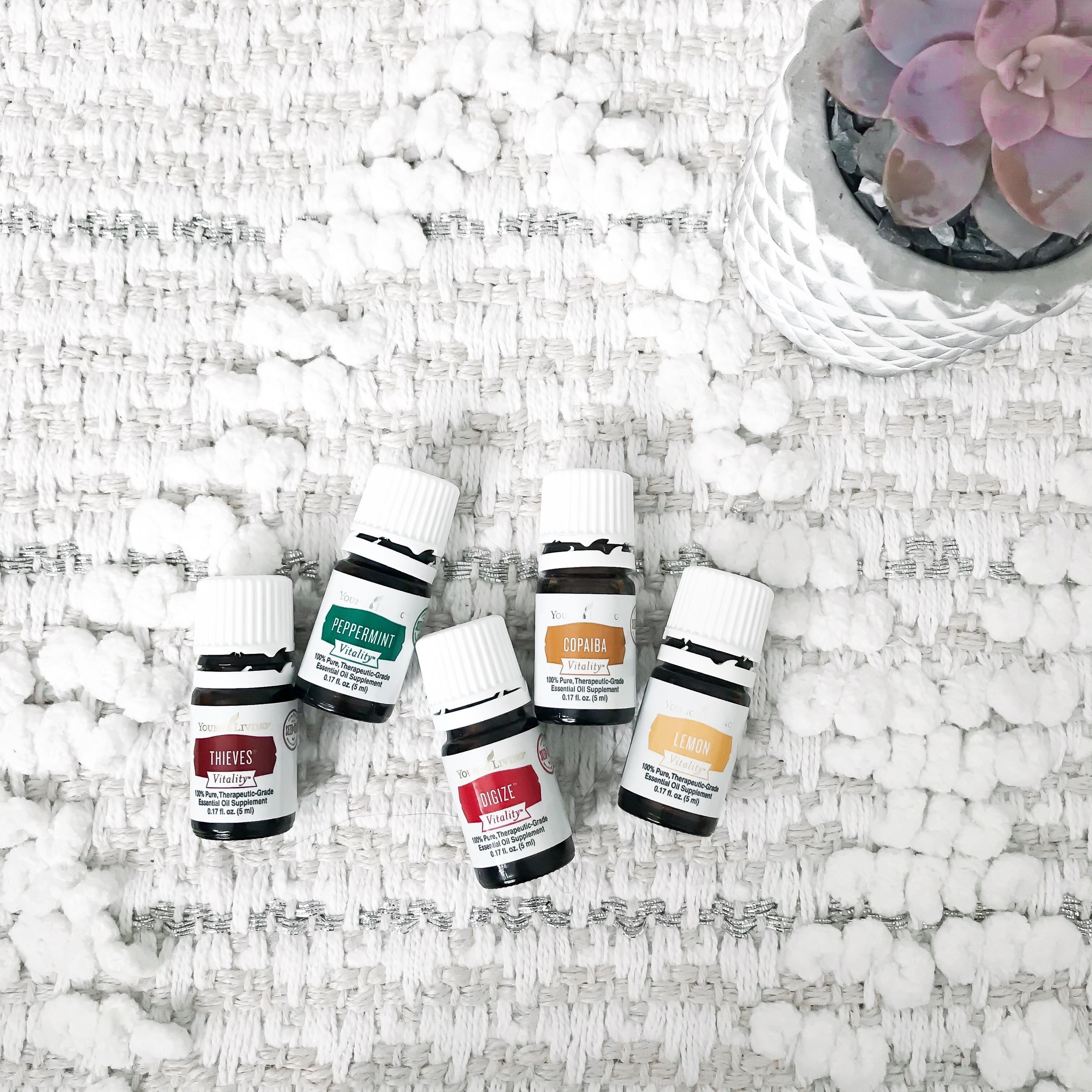 Essential Oils 101: What You Need to Know About Young Living | Pine Barren Beauty | how to use essential oils, how to get started with young living