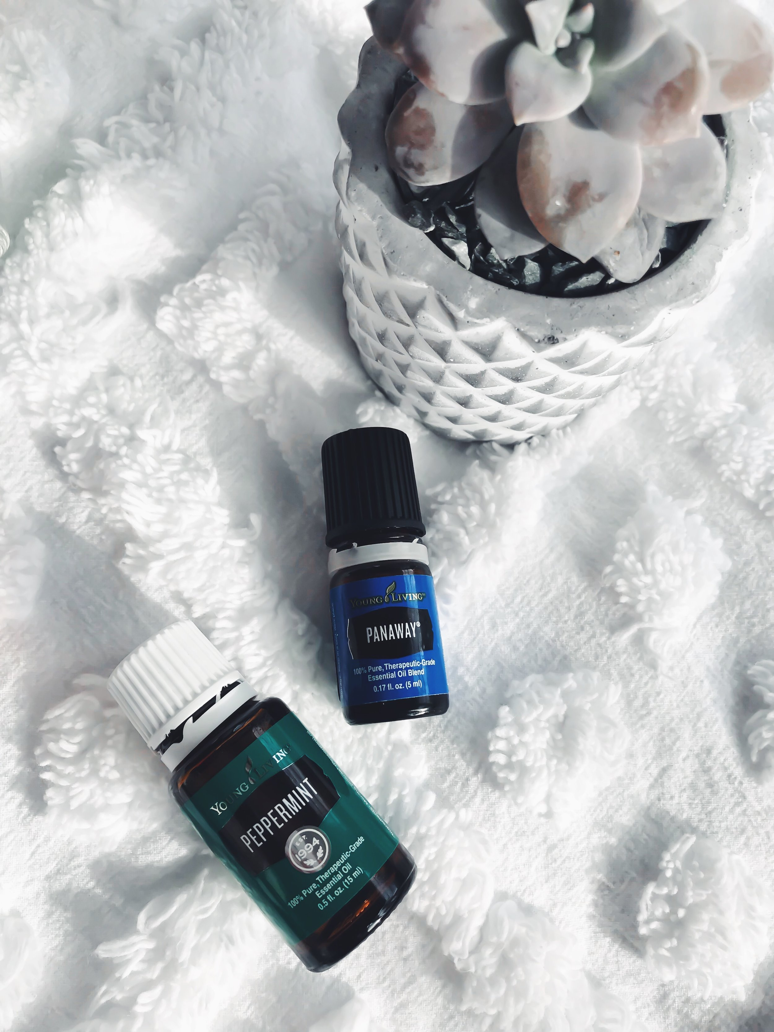 5 Ways to Use Essential Oils Every Day | Pine Barren Beauty | how to use essential oils, essential oils 101, young living essential oils