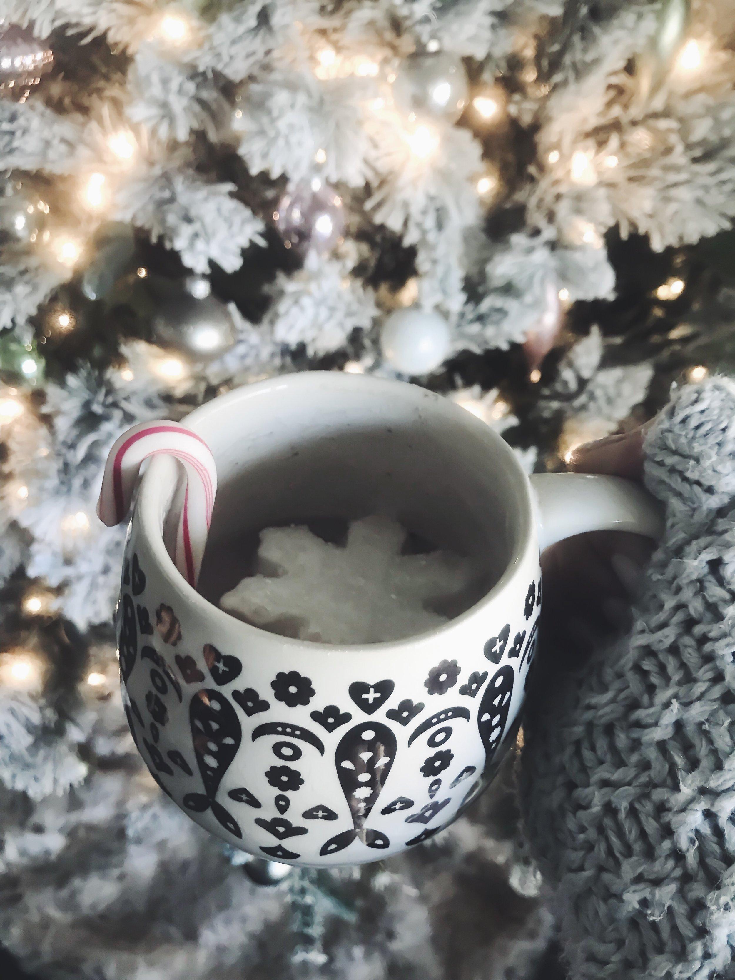 The Best After Christmas Sales   Pine Barren Beauty