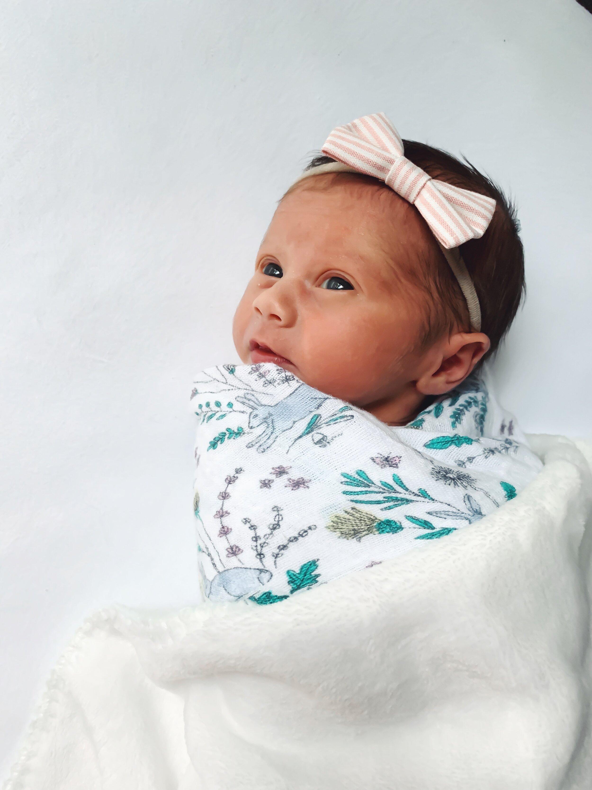 birth story, birth announcement