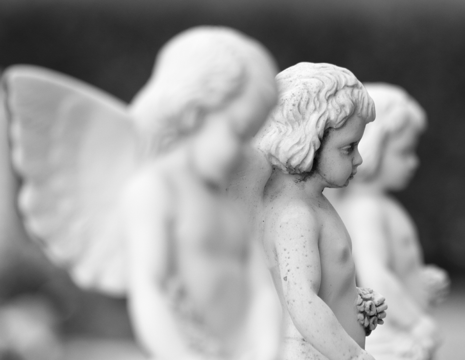 Angels gently usher light into the hearts of all. Their mission: to help you shine in big and bright ways.