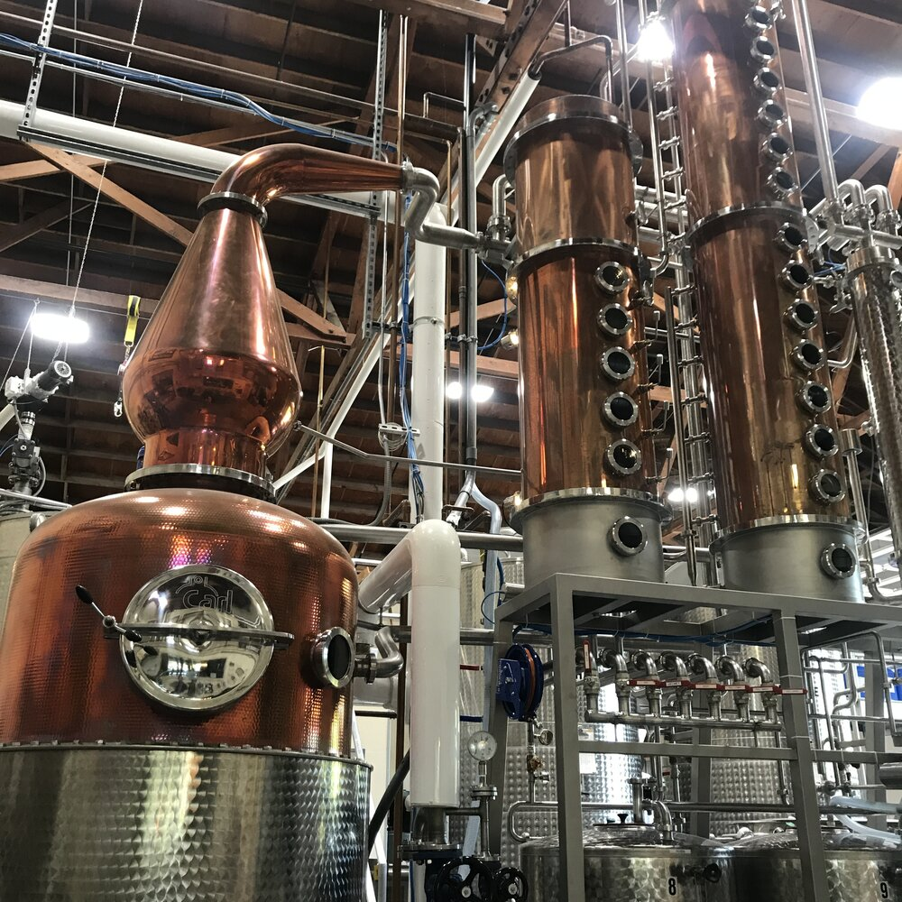the making of diluvio_collaboration with spirit works distillery 2