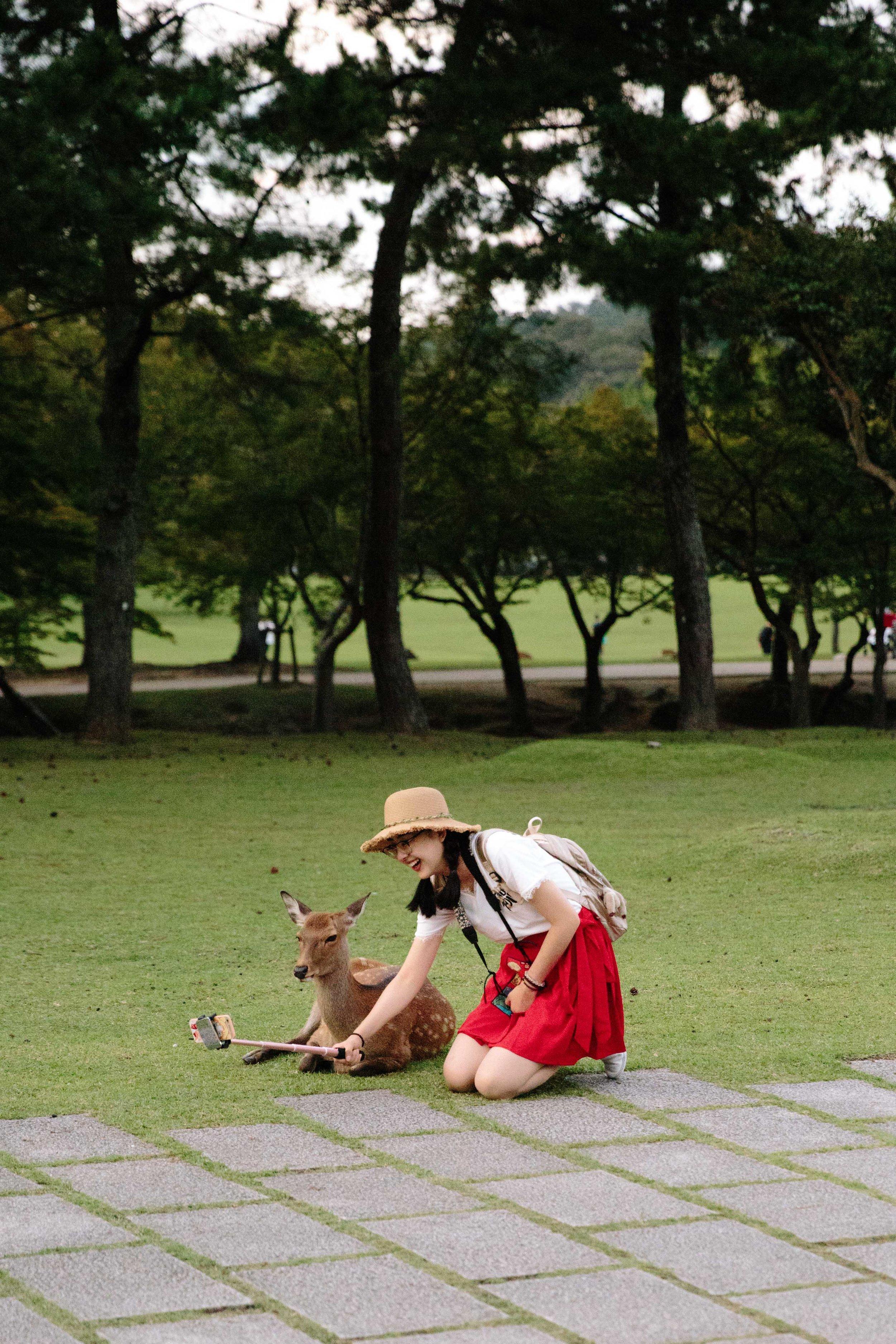 ajwells_japan-0006.jpg
