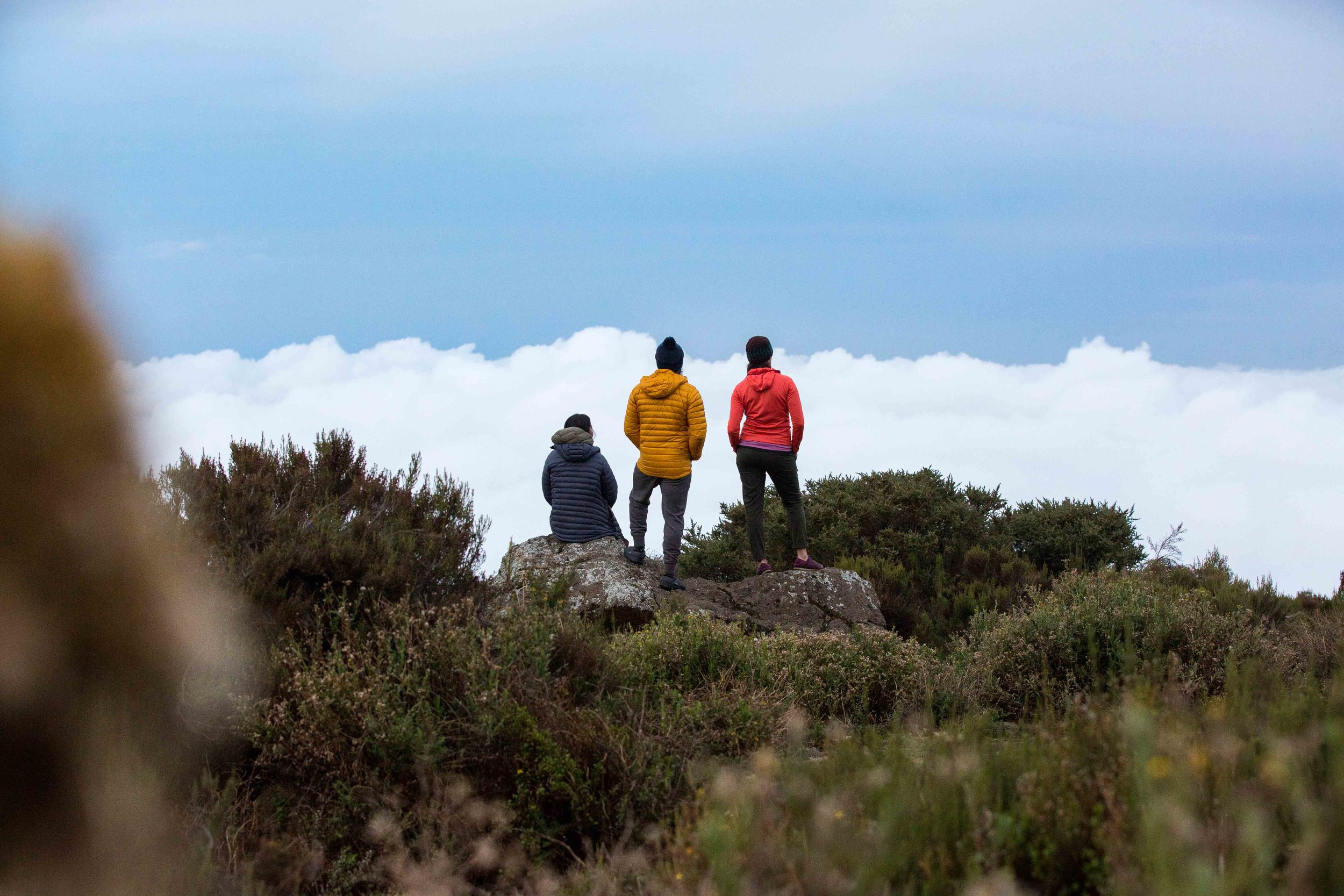ajw_REI_Kilimanjaro-20.jpg