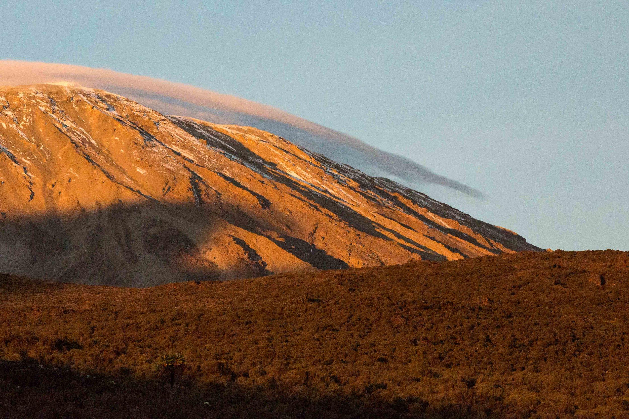 ajw_REI_Kilimanjaro-21.jpg