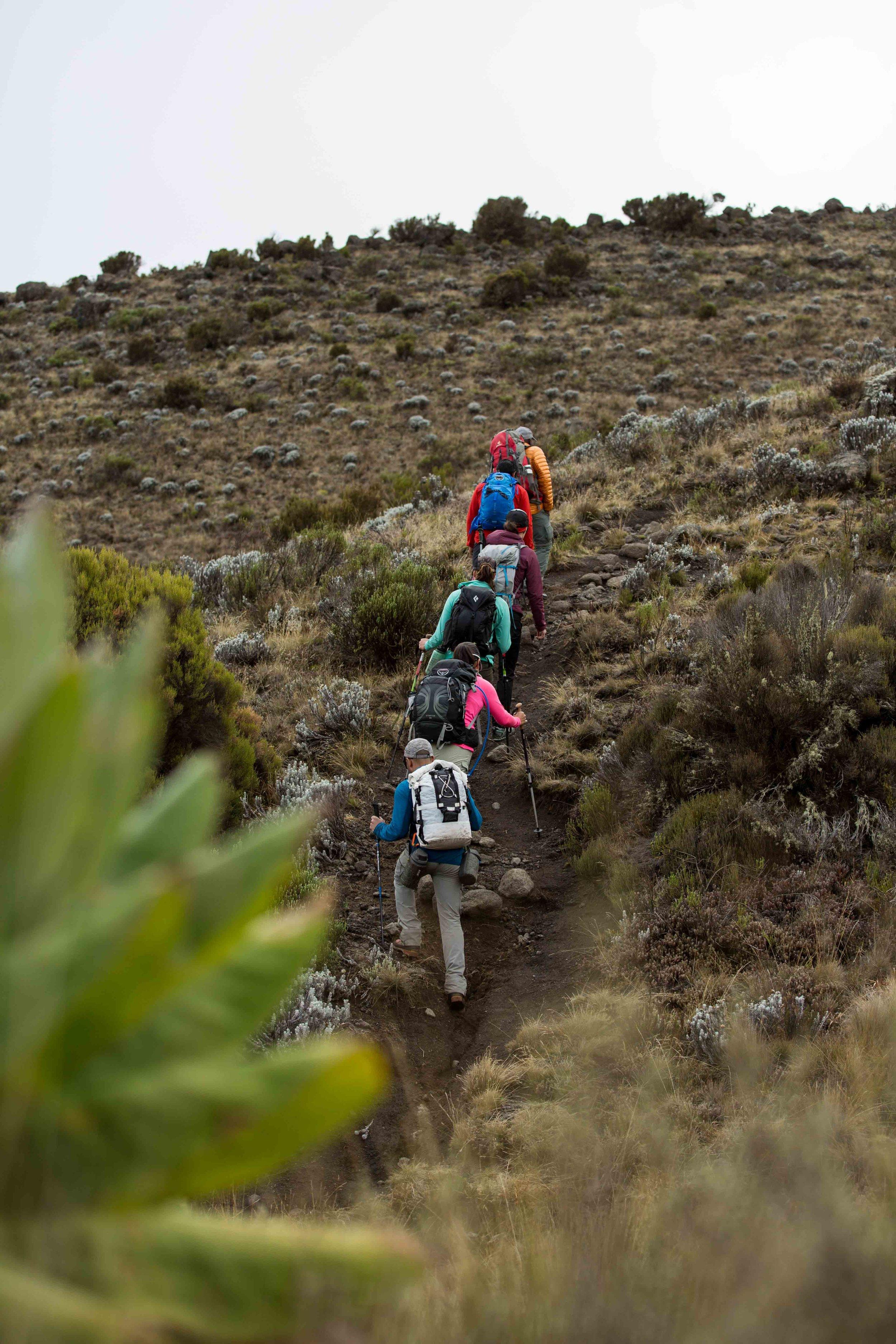 ajw_REI_Kilimanjaro-23.jpg